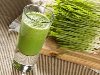 Germinat de blat (wheatgrass)