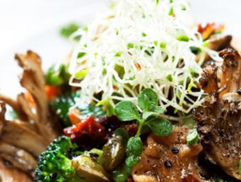 Germinats d'alfals i fenigrec a la cuina diària