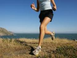 Els àcids grassos i l'esport
