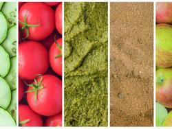 El rebost d'estiu: els 5 imprescindibles!