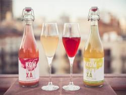 T'imagines una beguda carbonatada i amb beneficis per a la salut? Doncs existeix, i es diu Kombutxa!
