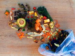 Guia anti malbaratament: la gran assignatura pendent a la cuina