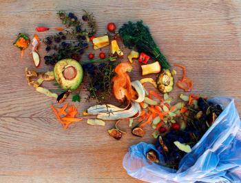 Guia antimalbaratament: la gran assignatura pendent a la cuina
