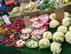 Barcelona acull per primera vegada el Mercat de la Terra Slow Food