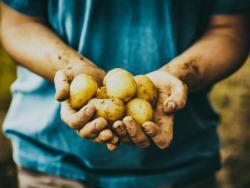 Serem capaços d'alimentar el món l'any 2050?