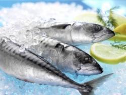 """""""Panga"""" i tilàpia, dos peixos enigmàtics"""