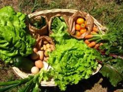 3 de cada 10 catalans consumeixen productes ecològics
