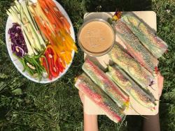 Rotllets de primavera SEN amb salsa de cacauet