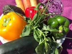 L'autoengany de la mala alimentació
