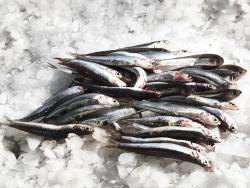 Aprendre a comprar peix