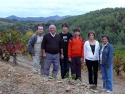 Solà Clàssic: vinyes ecològiques més enllà de la tradició