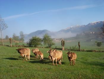 La Cerdanya té unes condicions òptimes per a la producció ecològica