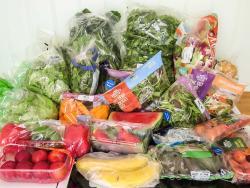 Un estudi detecta més de vint metabòlits del plàstic a l'orina