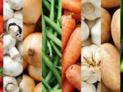 Marxa a favor de la regulació dels professionals de la nutrició