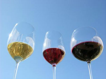 Beu vins ecològics